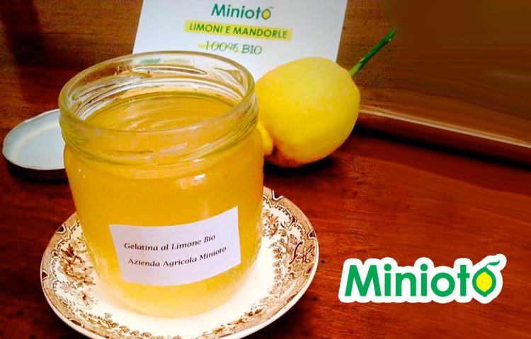 gelatina-al-limone-minioto