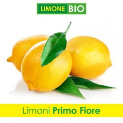 Acquista adesso i limoni bio primo fiore femminello siracusano biologico Minioto